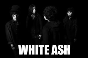 WHITE ASH1211