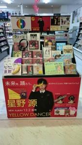 POP大賞13_山野楽器橋本1